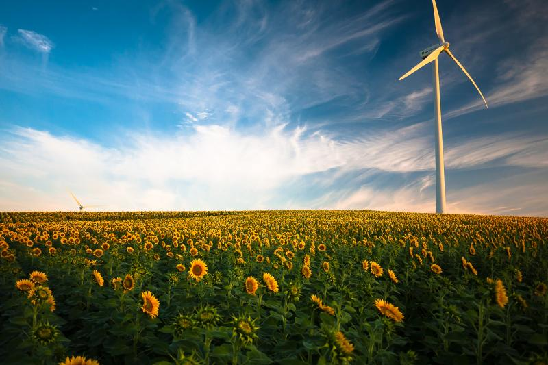 Wind Energy Cyprus Renewable